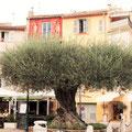 Altstadt von St. Tropez