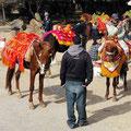 Nationalpark Ifrane Touristenrummel an der Cèdre Gouraud.