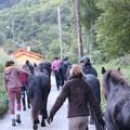départ de nos chevaux de selle pour le pré, quelques mètres plus bas