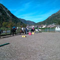 cours poneys, sous le soleil d'octobre