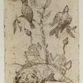 Skalko - Karlovska, Tatiana. Halle. Radierung. 2010. Auflage 50. Blatt 270 x 195 mm. Platte 200 x 125 mm. Mops vor Vögeln und Vögelgerippen. 001