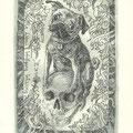 Bundzyuska, Joana, Malbork, Polen, Radierung 2013, Auflage 100, Blatt 160x120mm, Platte 120x75mm, Darwin auf Totenschädel