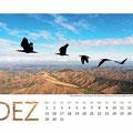Kalender in Zusammenarbeit mit dem Waldrappteam