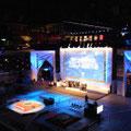 2011-12 全日本ロボット相撲全国大会 / 両国国技館