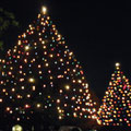 2013-12 立教大学イルミネーション点灯式  / 立教大学本館前広場
