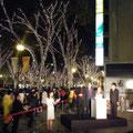 2010-11 2010 表参道 イルミネーション点灯式  / 表参道