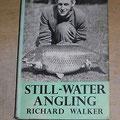 libro di Walker