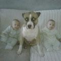 Jena e i suoi gemelli bipedi