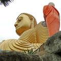 ...größten Budda Sri Lankas in Dambulla (Golden Tempel)