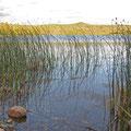 Erster Camp-Ort außerhalb Fox-Lake