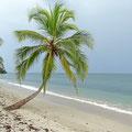 Cahuita Nationalpark - einsame Strände!
