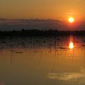 Sonnenuntergang am Skadarsee