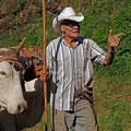 Tico mit ursprünglichem Ochsenkarren.