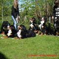 Sammy, Lotte, Louna, Alix, Alena, Alva (v.l.n.r.)