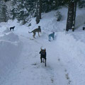 Klash en vacance dans les alpes !