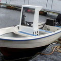 15` Boot mit 15 PS Motor