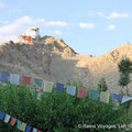 9. Namgyal Tsemo Gompa (Leh)