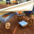イチゴ狩りマシーン。これはココの農場の人が利用しているもの。