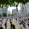 渋谷スクランブル交差点。見たかったんだぁ~。