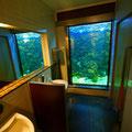 圧巻なのはこのトイレ。プチ水族館なのです。 Impressive, huh!?