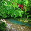 高知。日本一の清流と呼ばれる四万十川。