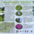 Infotalfel Naturschutzgebiet Hafenlohrtal