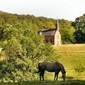 die neue Kapelle von Einsiedel