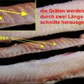 Fisch richtig filetieren