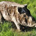 noch ein geschnitztes Wildschwein