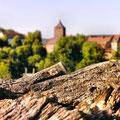 ein anderer Blick auf die Burg