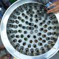 Impressionen vom Chatuchak Market (Eis am Stiel)
