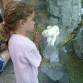 Siena sieht Ihren ersten Eisbären, im Centralpark Zoo