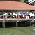 Das Empfangskomitee in Koh Tao. Da ist für jeden jemand dabei...