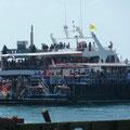 Next Stop Lampedusa...?