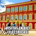 VISITAS EN BICI (ELÉCTRICAS)