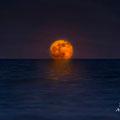 Lluna natural al Delta de l'Ebre