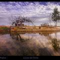 El Delta de l'Ebre Fotografia Andreu Gual