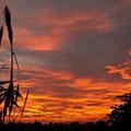 Posta de sol Fotografia Andreu Gual