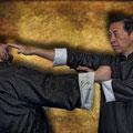 Ip Man Wing Chun Kung Fu  con el Maestro Samuel Kwok y Luis Lázaro