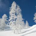 """""""Wintertraum"""" von Ing. Eugen Haug 1.) GW. 1.) EW."""