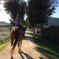 Nach einer Reitstunde auf Copa Cabana, Natalines bestem Pferd, der auf dem Weg zum Grand Prix ist