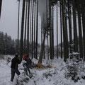 Baum fällt nachdem wir etwas nachgeholfen haben