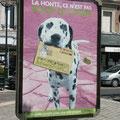 Campagne contre les déjections canines