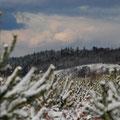 L'hiver est arrivé sur le camp de la Courtine (23)