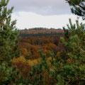 Couleurs d'automne dans la Creuse
