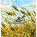Du vent dans les blés