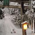 金劔宮(きんけんぐう)のお正月