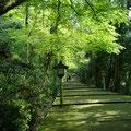 Five min drive to Shirayama Hime shrine