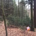 Avec la forêt encore en mode hivernal, les postes étaient bien visibles...