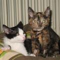Mia und Felix